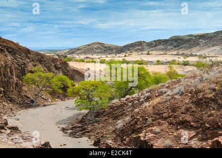 La Namibie, région de Kunene, Damaraland, vallée de l'Tuyaux d'Orgue