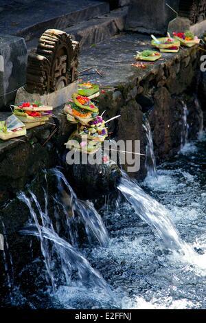 L'INDONÉSIE, Bali, Ubud Pura, près de Temple Tirta Empul, baignoire à Tampaksiring source sacrée Banque D'Images
