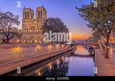 France Paris bords de Seine classés au Patrimoine Mondial par l'UNESCO La cathédrale Notre Dame sur l'Ile de la Banque D'Images