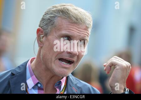 Spielberg, en Autriche. 21 Juin, 2014. L'ambassadeur de Red Bull, ex-pilote de Formule 1 David Coulthard, a un chat Banque D'Images
