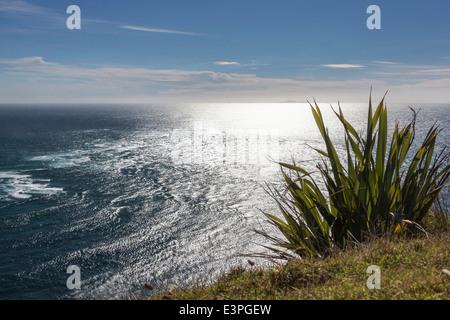 Du cap Reinga où la mer de Tasman Péninsule Aupouri répondre Pacifique Nouvelle-zélande Banque D'Images