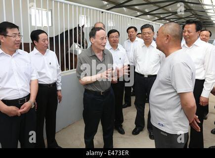 Xilinhot, la Région autonome de Mongolie intérieure. 3 juillet, 2014. Wang Qishan (3L), membre du Comité permanent du Bureau politique du Parti communiste chinois (PCC) et secrétaire du Comité central de la Commission centrale de contrôle disciplinaire (CCDI) du PCC, des visites d'une base de l'élevage de chevaux dans la région de Xilinhot, ville du nord de la Chine, région autonome de Mongolie intérieure, le 3 juillet 2014. Wang a fait une tournée d'inspection dans la ligue de Xilingol, du 3 au 4. © Pang Xinglei/Xinhua/Alamy Live News