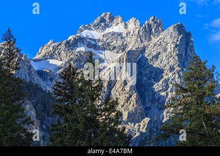 Le mont Owen et de pins de Cascade Canyon, Parc National de Grand Teton, Wyoming, États-Unis d'Amérique, Amérique du Nord