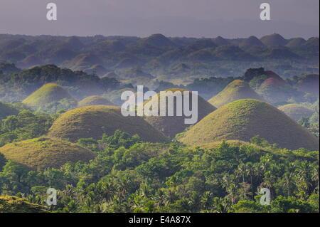 Collines de chocolat, Bohol, Philippines, Asie du Sud, Asie Banque D'Images