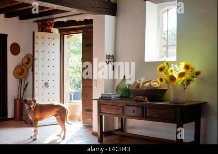 Verseuse de tournesols sur la vieille console en bois table en entrée avec porte cloutée et carrelage en terre cuite Banque D'Images