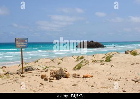 Plage avec une épave à Cabo de Santa Maria, Île Boa Vista au Cap Vert Banque D'Images