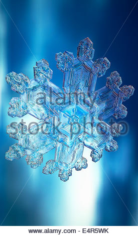 Close up of snowflake Banque D'Images