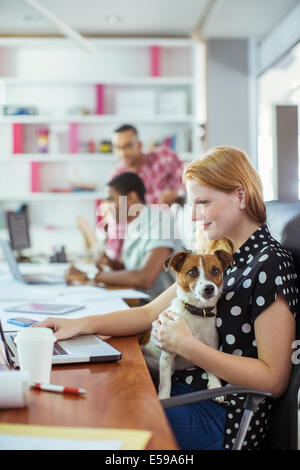 Dog sitting on woman's lap in office Banque D'Images
