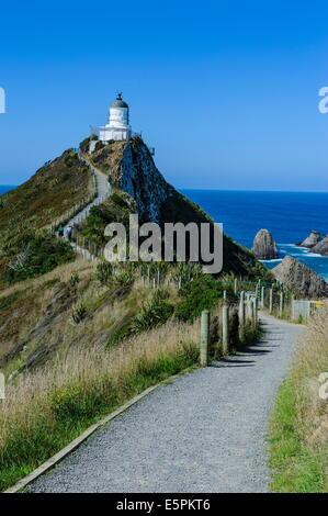 Nugget Point Phare, les Catlins, île du Sud, Nouvelle-Zélande, Pacifique Banque D'Images