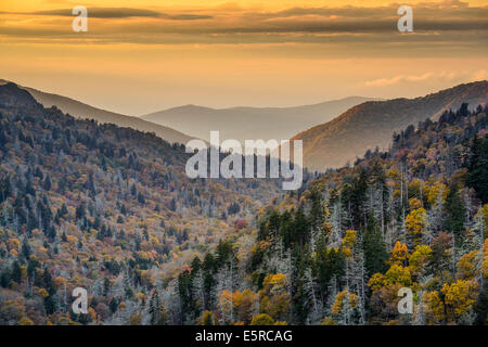 L'aube dans les Smoky Mountains National Park, California, USA. Banque D'Images