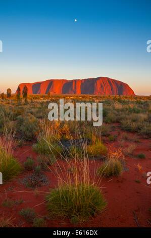 Uluru, Ayers Rock, en fin d'après-midi, Territoires du Nord, Australie