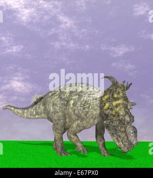 Dinosaure Pachyrhinosaurus Dinosaurier Pachyrhinosaurus /