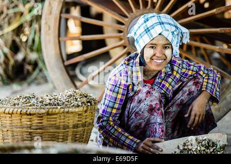 Asian girl vendre au marché aux herbes Banque D'Images