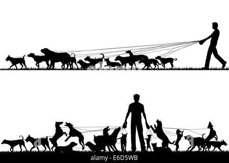 Deux silhouettes au premier plan d'un homme marchant beaucoup de chiens avec tous les éléments comme des objets Banque D'Images