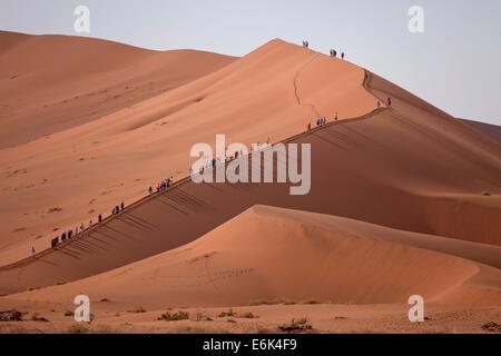 Les Dunes de Sossusvlei escalade les touristes, Namib-Naukluft National Park, Namibie Banque D'Images