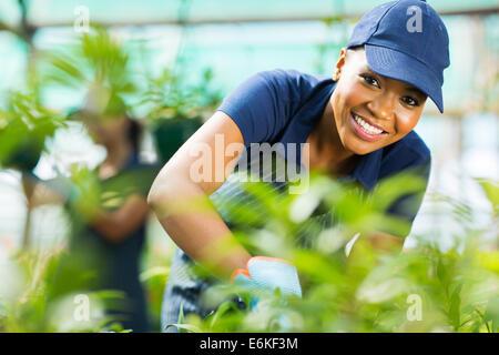 Jeune femme africaine travailleur de travailler à l'intérieur de gaz à effet de pépinière Banque D'Images