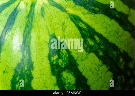 Melon d'eau Banque D'Images