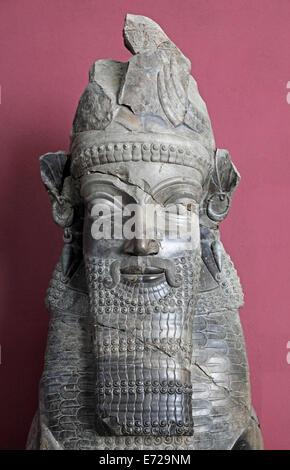Buste du site archéologique de Persépolis, Musée National, Téhéran, la province de Téhéran, la Perse, l'Iran Banque D'Images