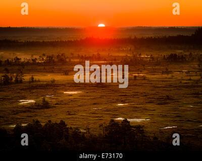 Lever de soleil sur un matin tôt au Torronsuo marais en Finlande. Le soleil à peine visible sur l'horizon. Banque D'Images