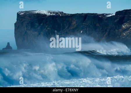 Vagues se brisant sur Renisfjara plage en face de la pointe sud de l'Islande, Dyrhólaey Banque D'Images