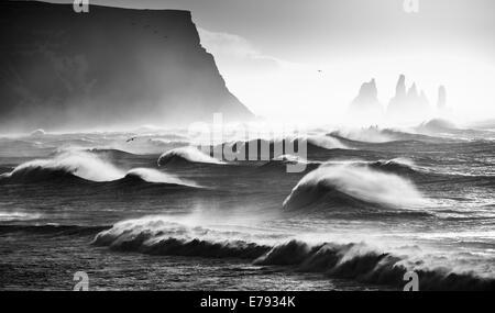 Vagues se brisant sur Renisfjara beach alors que les oiseaux passent au-dessus, dans le sud de l'Islande Banque D'Images