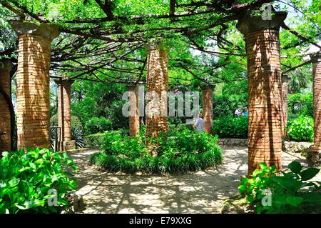 L'hortensia Avenue dans les jardins de la Villa Cimbrone, Ravello, Italie
