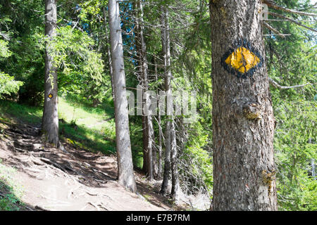LA FOULY, SUISSE - Le 30 août: tour du Mont Blanc peint sur le logo d'arbres sur la route. La célèbre tour passe Banque D'Images