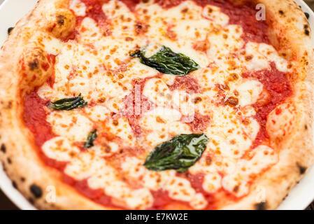 Pizza margarita italienne détail Banque D'Images
