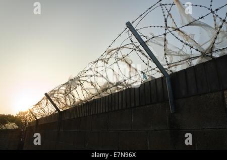 Haute sécurité galvanisé barbelés et barbelés de dissuasion pour ralentir la montée au mur avec masse de plastique Banque D'Images
