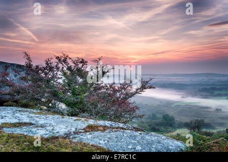 Un magnifique lever du soleil d'automne sur une vallée brumeuse de Helman Tor un affleurement de granite et de lande près de Bodmin à Cornwall