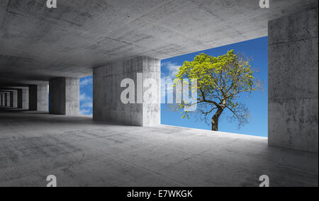 Résumé vide intérieur en béton avec ciel bleu et vert petit arbre à l'extérieur, concept écologique Banque D'Images