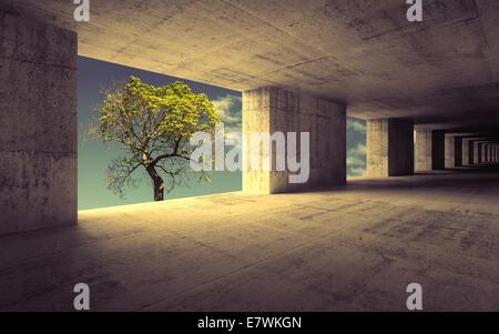 Résumé vide intérieur en béton avec Sky et petit arbre vert Banque D'Images