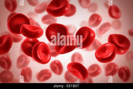 Vue microscopique des cellules sanguines. Banque D'Images