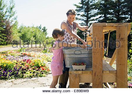 Mère et fille de rincer les baies cueillies fraîches Banque D'Images
