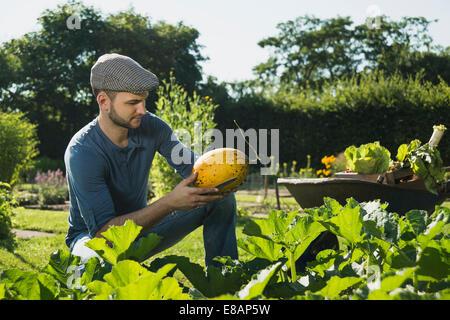 Contrôle de légumes jardinier Banque D'Images