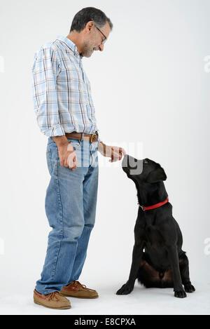 Man petting dog labrador retriever noir Banque D'Images