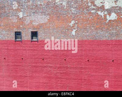Mur de briques avec de la peinture Banque D'Images
