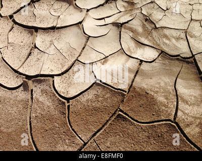 USA, Nevada, la terre craquelée, la sécheresse dans les terres desséchées Banque D'Images