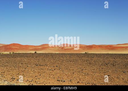Paysage de dunes de sable, Naukluft National Park, Sossulsvlei, Namibie Banque D'Images