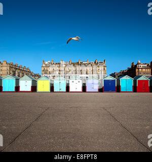 Rangée de cabines de plage multicolores, Brighton, Angleterre, Royaume-Uni Banque D'Images
