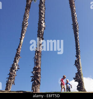 Deux garçons jouant de palmiers Banque D'Images