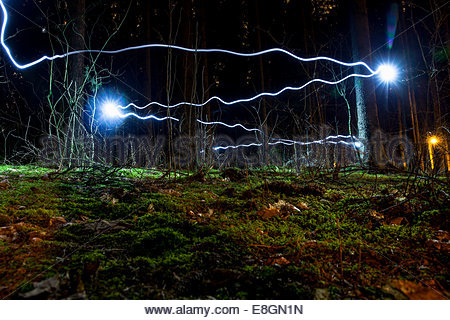 Blue light trails in forest Banque D'Images