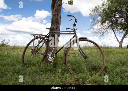 Un vieux vélo utilisé pour le transport dans les zones rurales Zambnia s'appuie contre un arbre sur l'île de Chikuni Banque D'Images