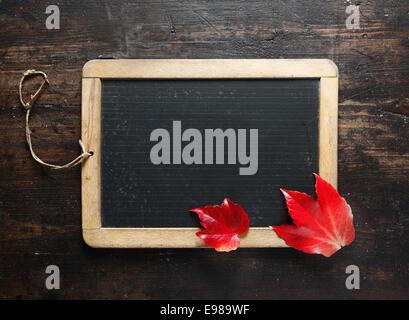 Petit tableau encadré en blanc et coloré l'automne les feuilles rouges sur un fond sombre bois texturé pour votre Banque D'Images