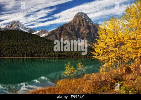 Or automne tremble le long du lac de la sauvagine avec Pic Howse et Mt Khéphren en Alberta's Canadian Rockies et Banque D'Images