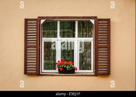 Fenêtre avec volets et de fleurs Banque D'Images