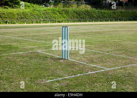 Wicket Cricket sur bande fraîchement préparé
