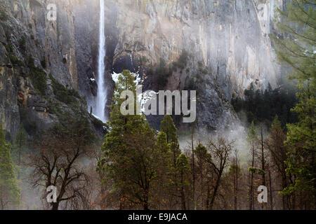 Bridalveil Falls sur un matin brumeux, vallée de Yosemite, Yosemite National Park, California, USA