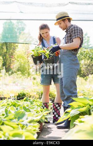 Jardiniers discuter plus de plantes en pot au jardin Banque D'Images