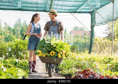 Jardiniers discuter tout en poussant les plantes de serre à brouette